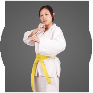 Martial Arts Martial Arts America  Adult Programs