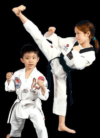 Martial Arts America  Fremont, California